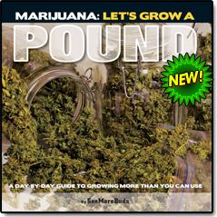 Marijuana: Let's Grow a Pound